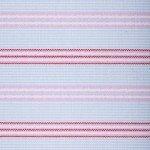 Pink Speed Stripes