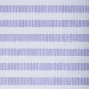 Butcher Blue Stripe