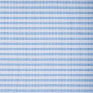 Baby Blue Bengal Stripe